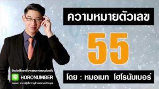 55 เลขธาตุดิน เลขแห่งสติ เลขศาสตร์ เลขมงคล เบอร์มงคล โดย หมอเมท โฮโรนัมเบอร์