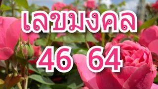 เลขมงคล 46 64  มีเสน่ห์ที่วาจา การค้าขาย งานขาย นักพูด